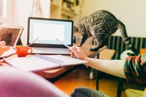 Online pedagogiek en didactiek